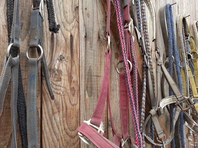 10 DIY Horse Barn and Tack Room Organization Ideas